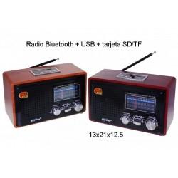 RADIO OKLAHOMA Bluetooth + USB + tarjeta SD/TF